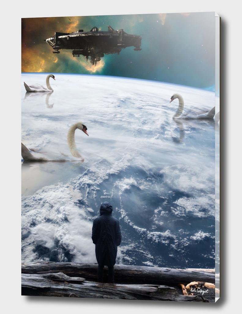 Universe expectation