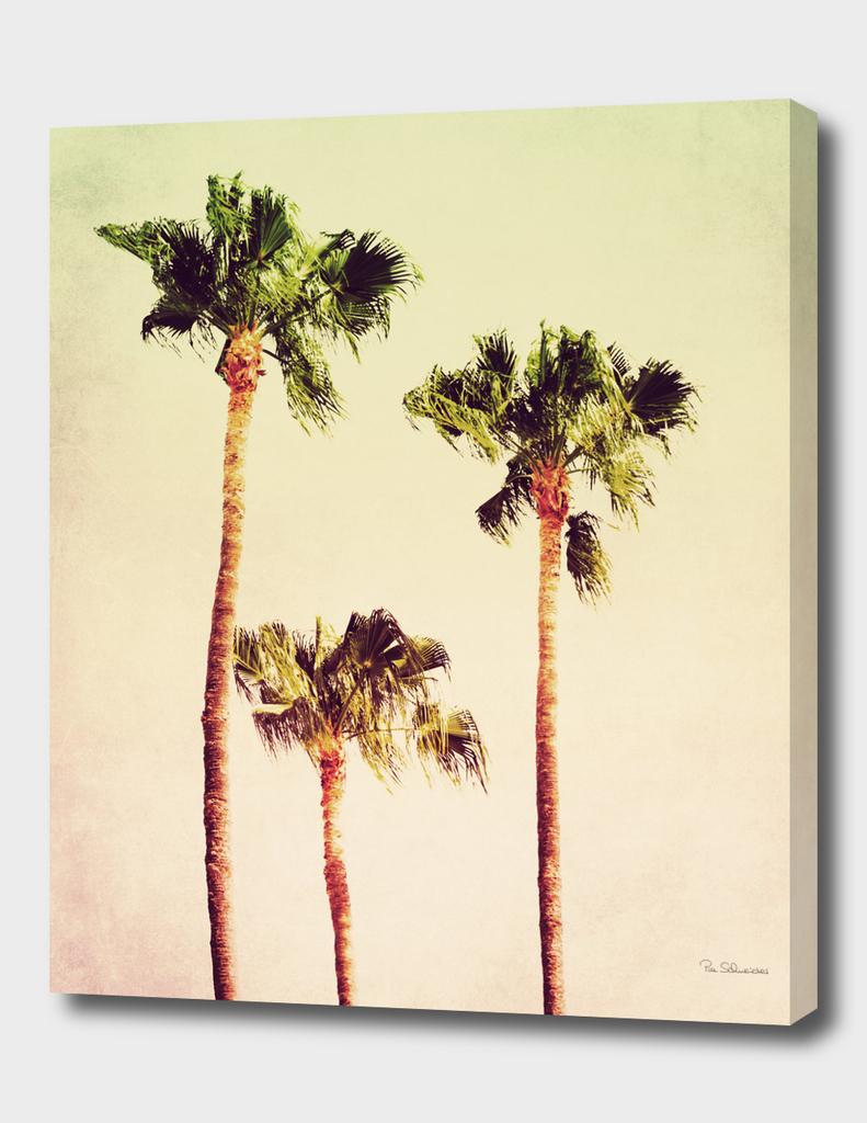 PASTEL PALM TREES no2