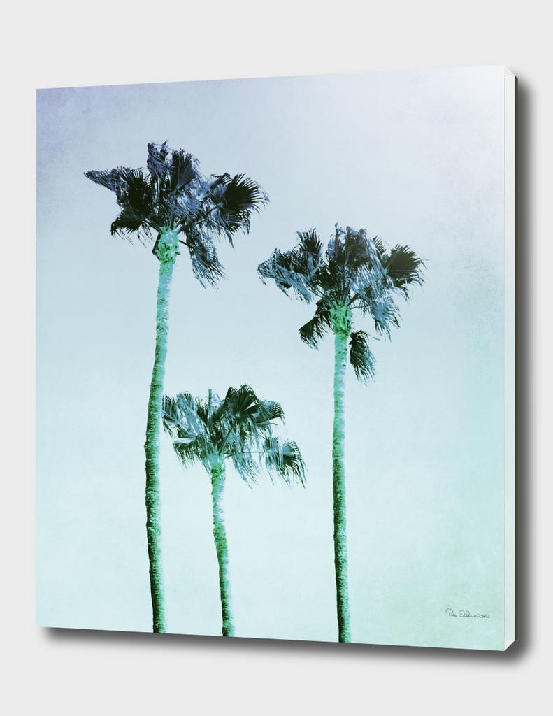 PASTEL PALM TREES no3