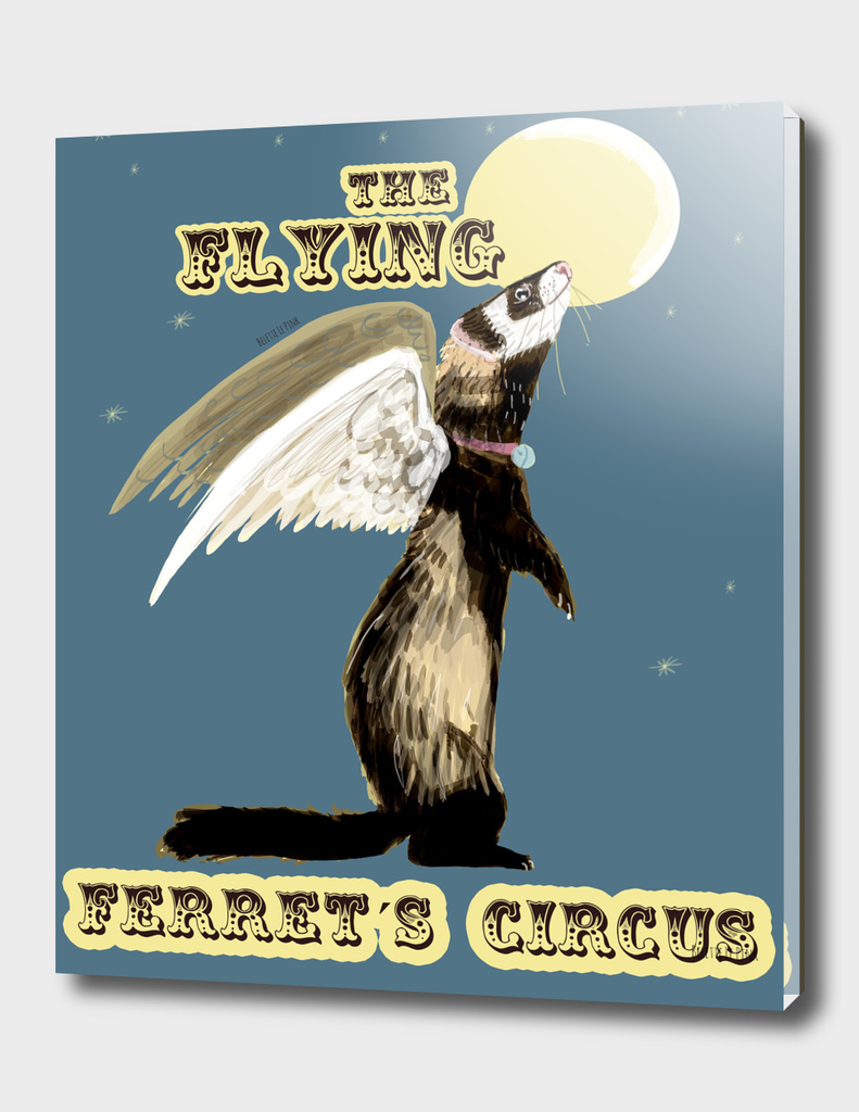 The Flying Ferret´s circus