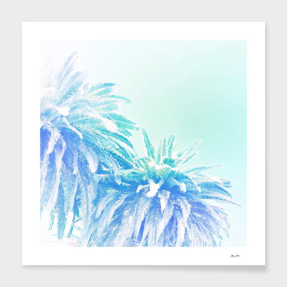 Dreamy Tropical Palm Blues