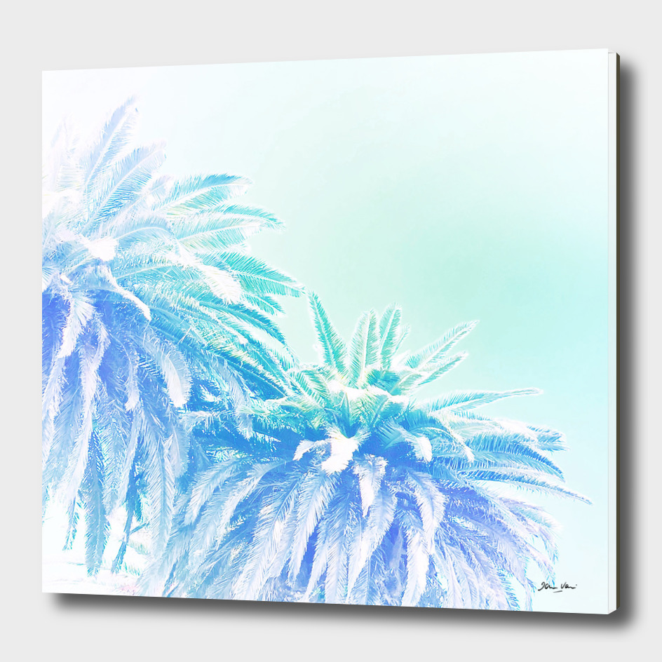 Dreamy Tropical Palm Blues
