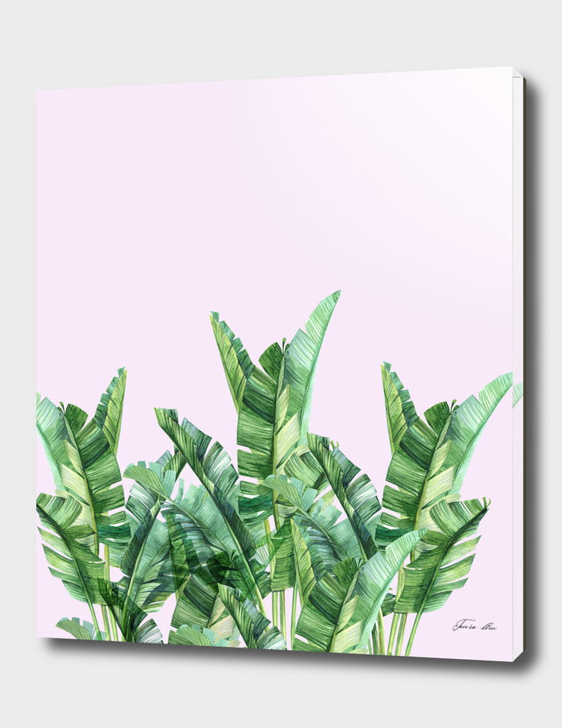 Banana leaves over pink background