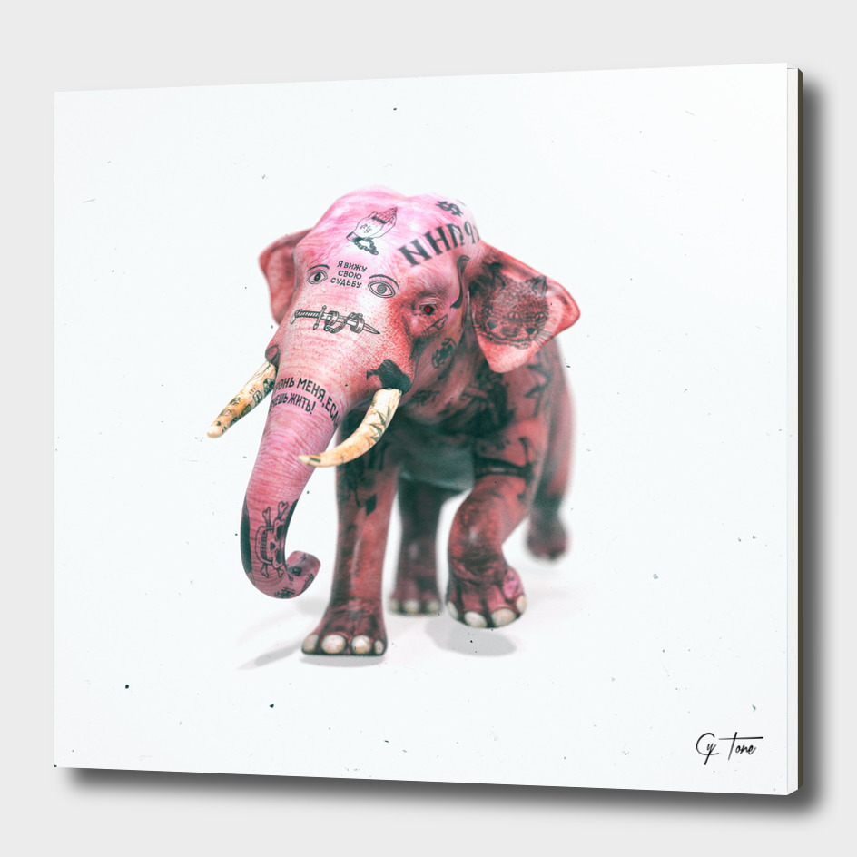 I believe in pink elephants