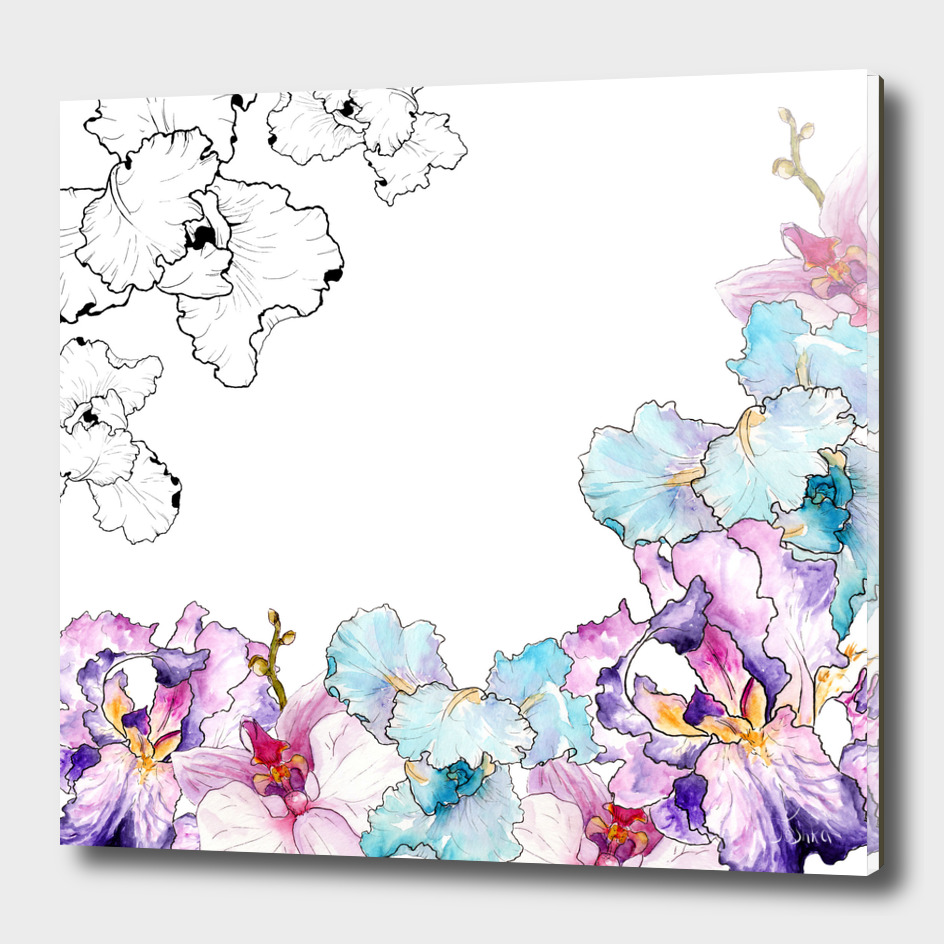 watercolor irises and orchid graphics