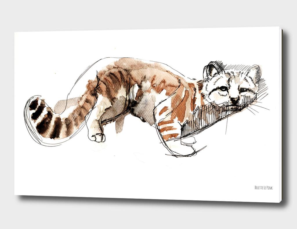 Totem Andean Cat (Leopardus jacobita)