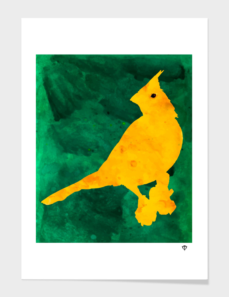 Cardenal Yellow