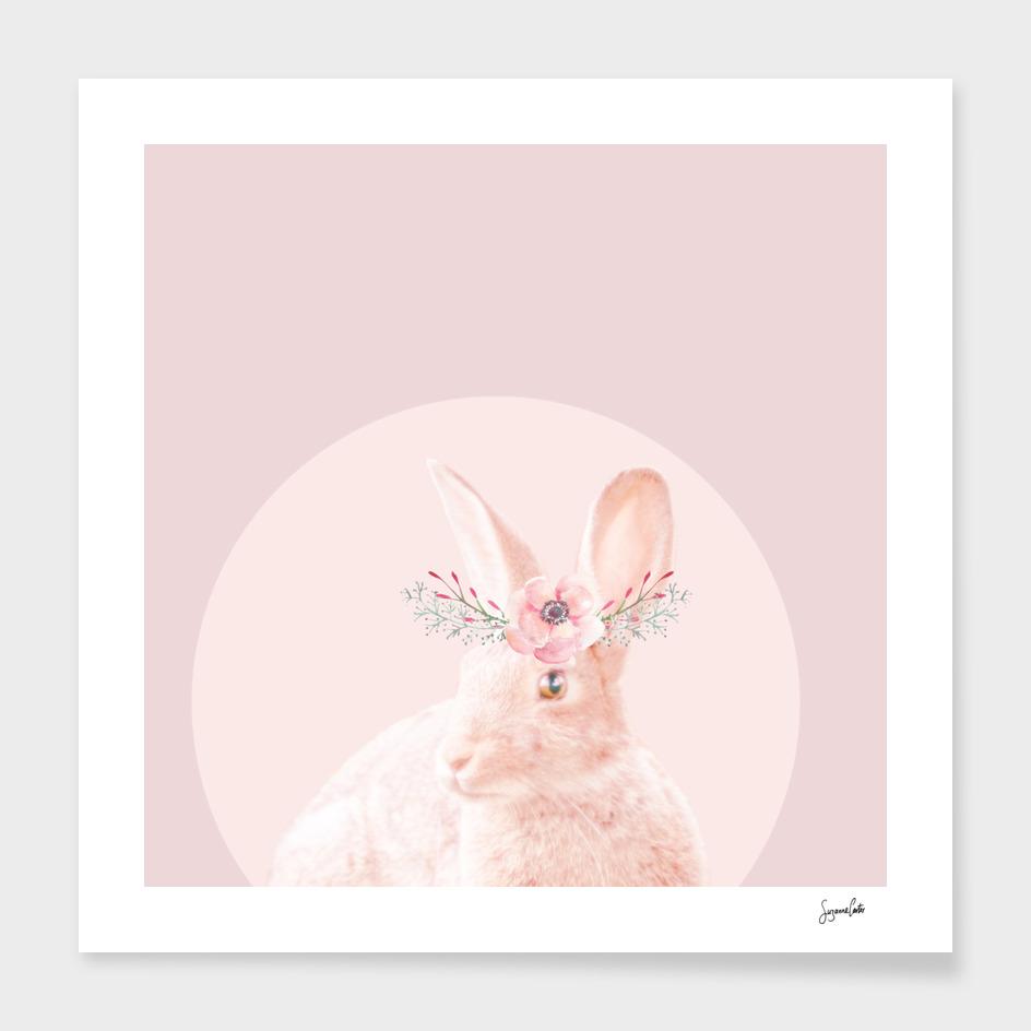 briar rabbit