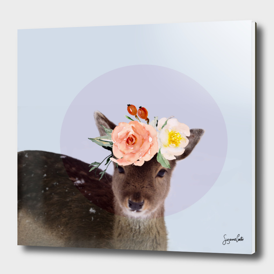 oh deer 2