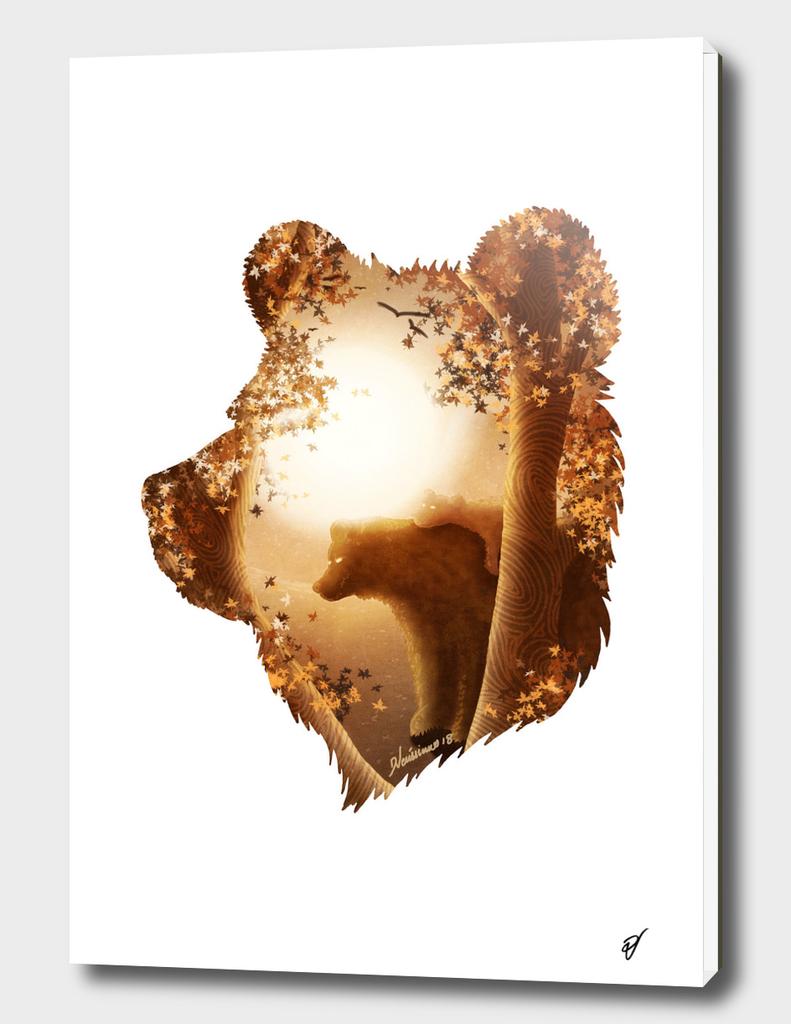 Bear's Hideout