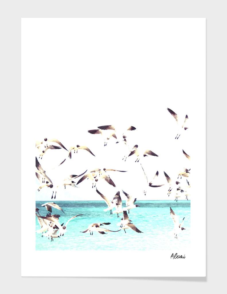 Seagulls Illustration