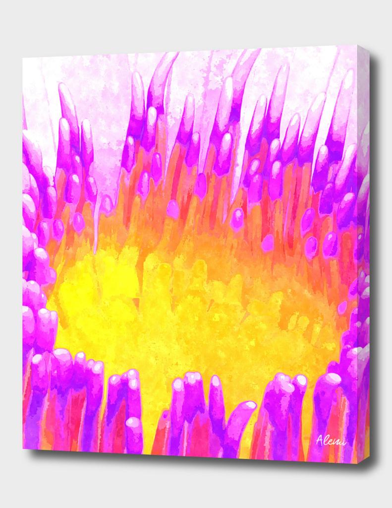 Waterlily Illustration