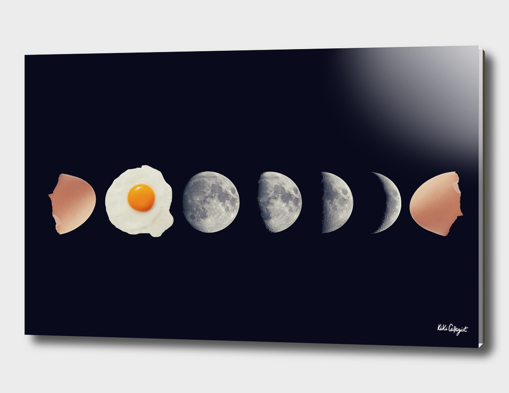 eggs phases