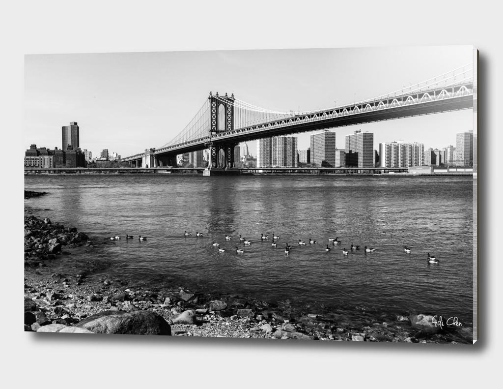 Brooklyn Bridge Park Dumbo