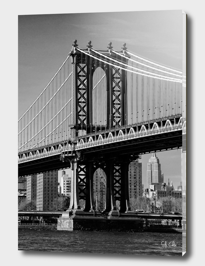 Portrait of Manhattan Bridge