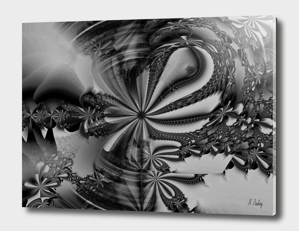 Black and White Daisy Fractal