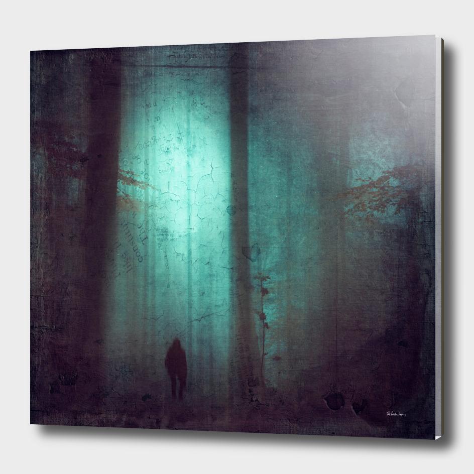 Schattenwelt - World of Shadows