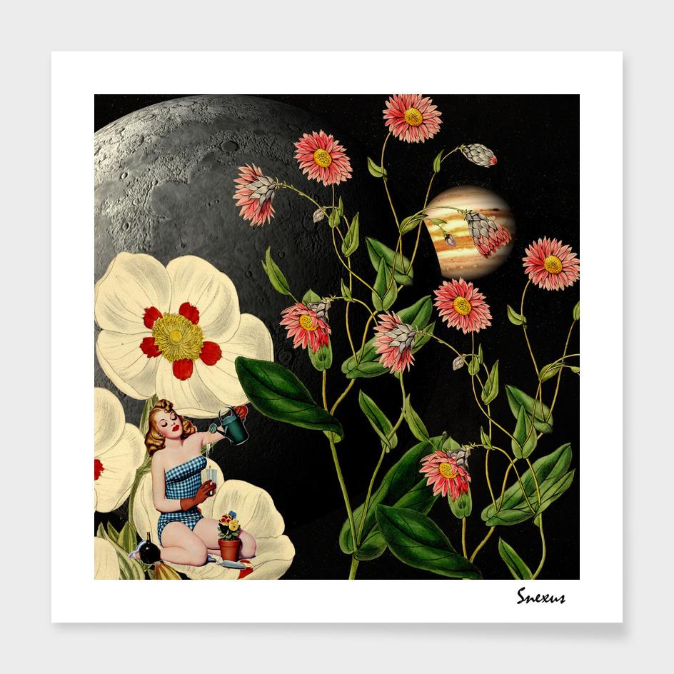 big flowers dream on the moon