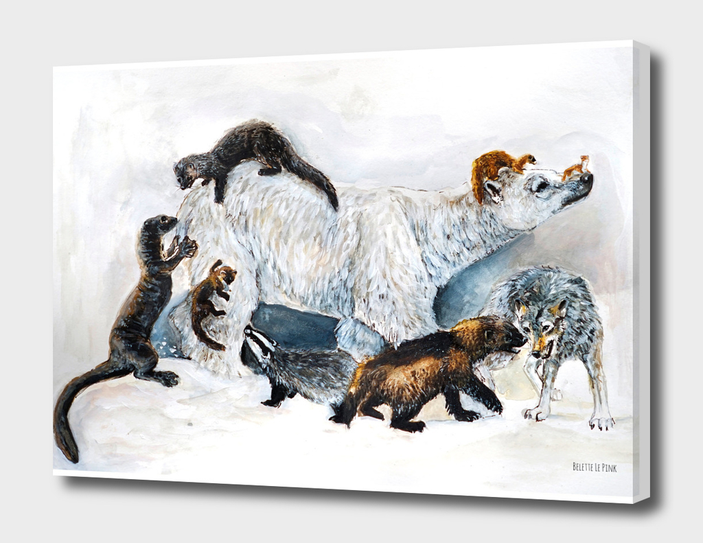 Awesome Mustelids