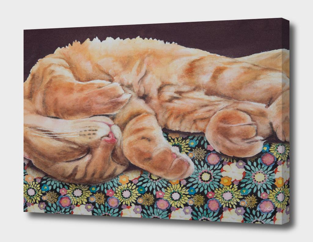 Allegory of a Kitten's Life Dreamweaver No.13