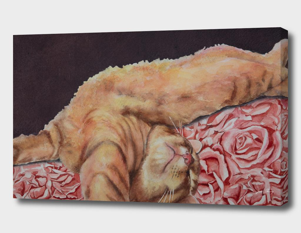 Allegory of a Kitten's Life / Dreamweaver No.6