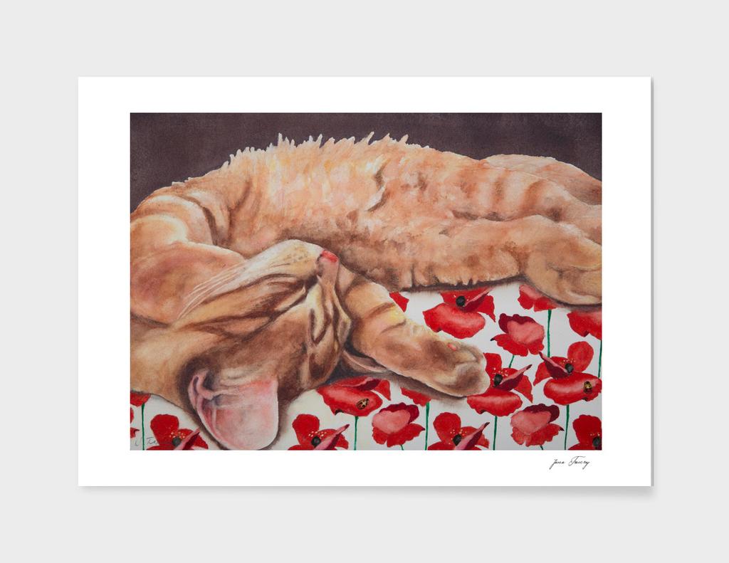 Allegory of a Kitten's Life / Dreamweaver No.5
