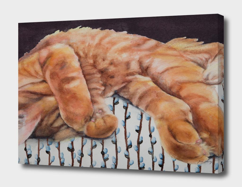 Allegory of a Kitten's Life / Dreamweaver No.3