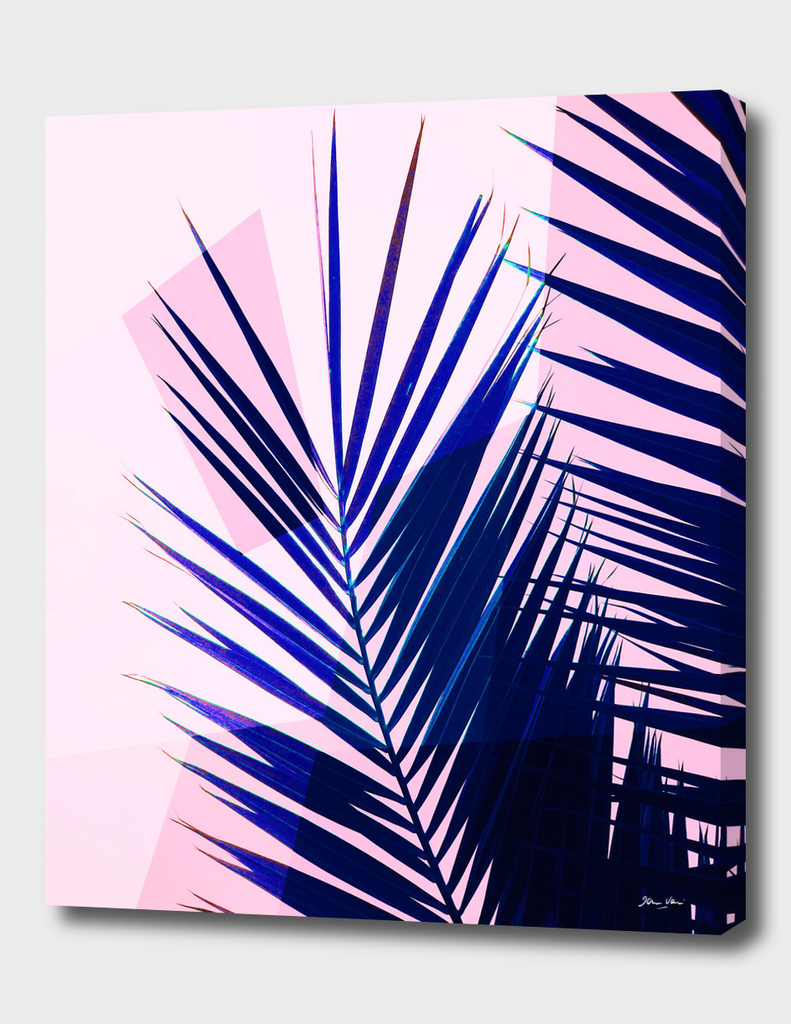 Indigo palm leaves on pastel pink geometry