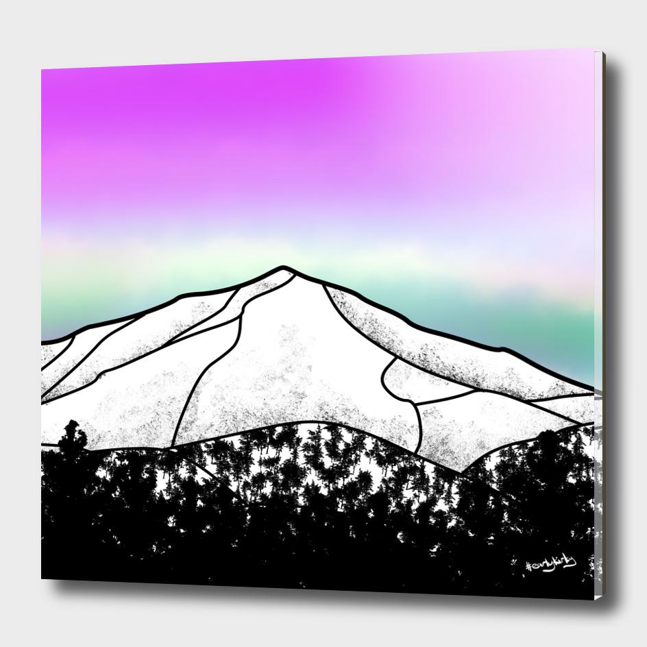WHITEFACE MOUNTAIN LANDSCAPE
