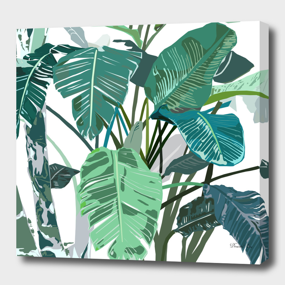 Beautiful Banana Leaves