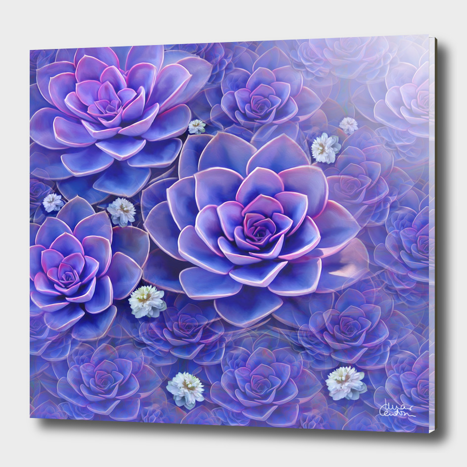 """Bouquet of pastel violet exotic succulents"""