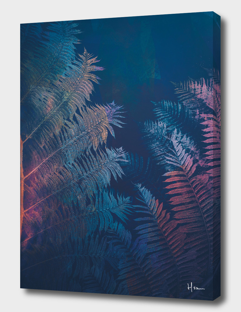 Abstract Fern