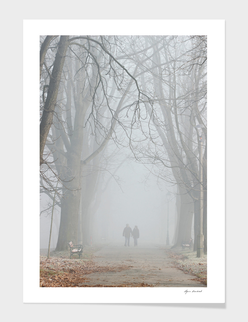Couple walking in misty park.