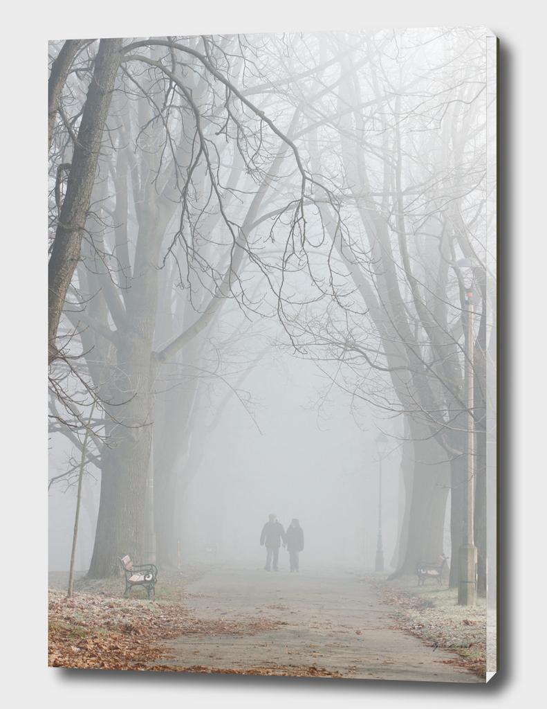 Couple walking in misty park.