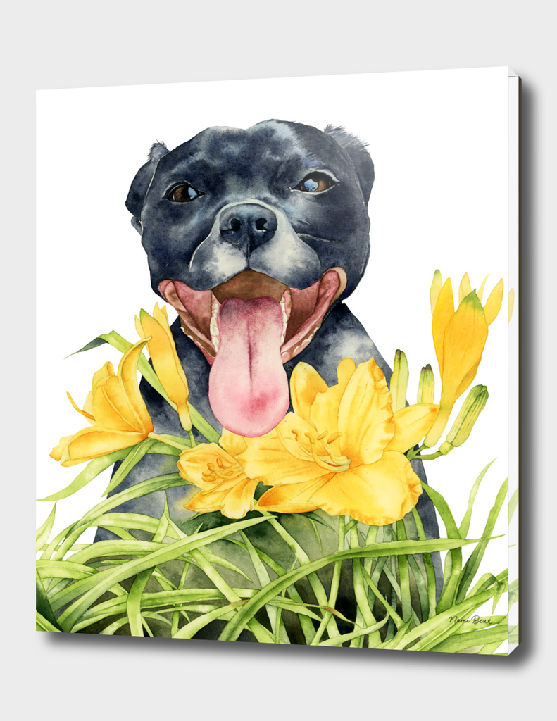 Joy | Pit Bull Dog and Daylily Watercolor Painting