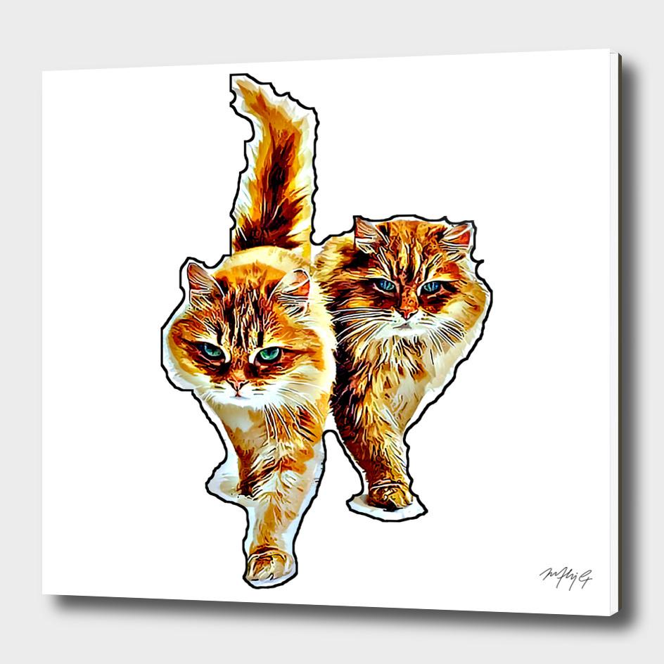 gemini cats