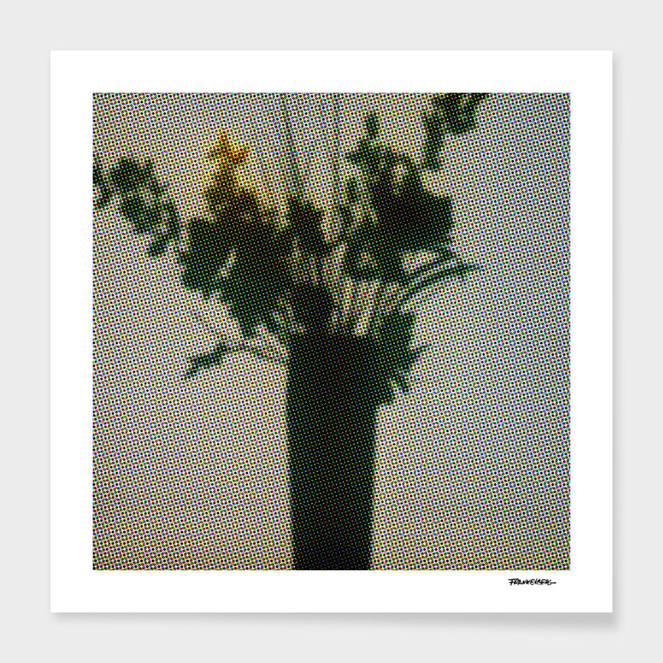 Flowers on the Window – Dots