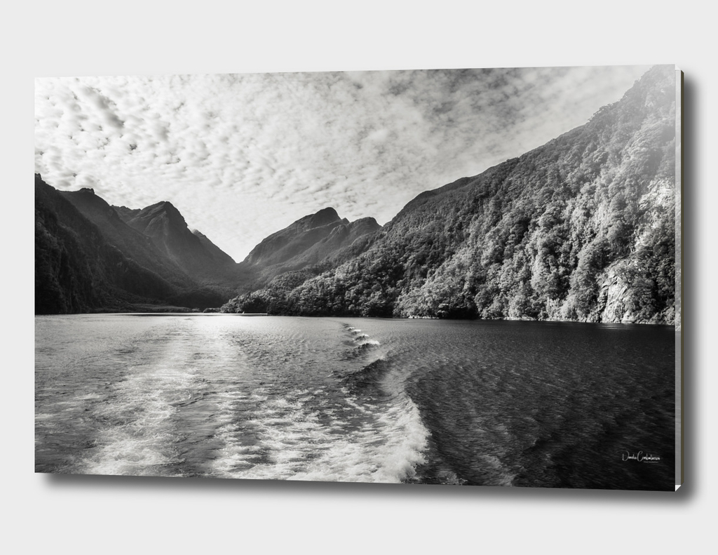 Morning Cruise at Doubtful Sound in black and white