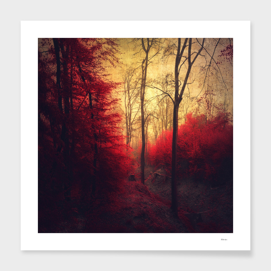 ruby red forest