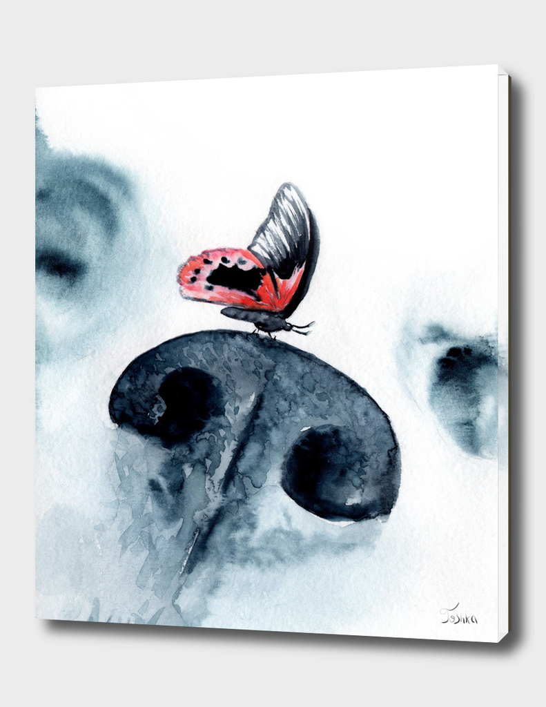 a butterfly on the nose of a dog
