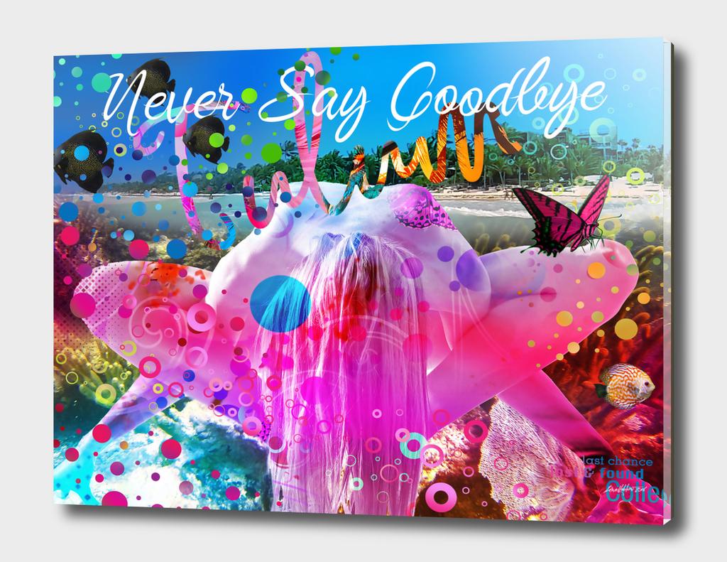 Nerver Say Goodbye