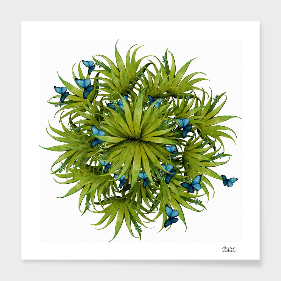 """El Bosco fantasy, tropical island blue butterflies 02"""