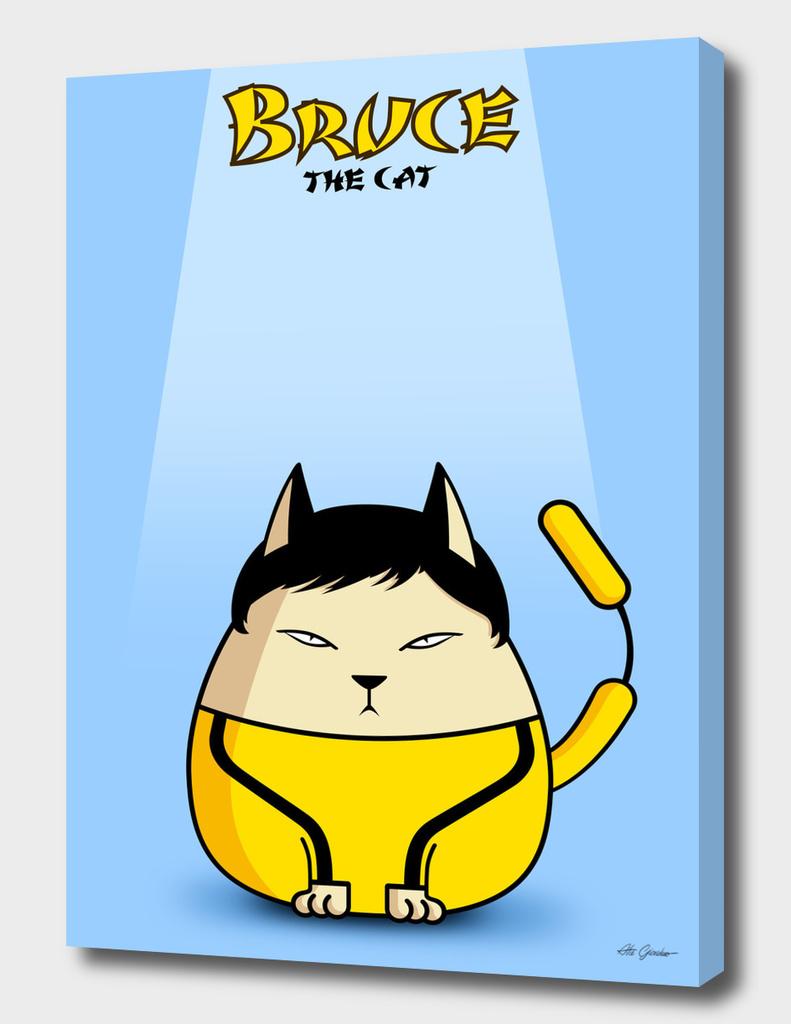 BruceCat