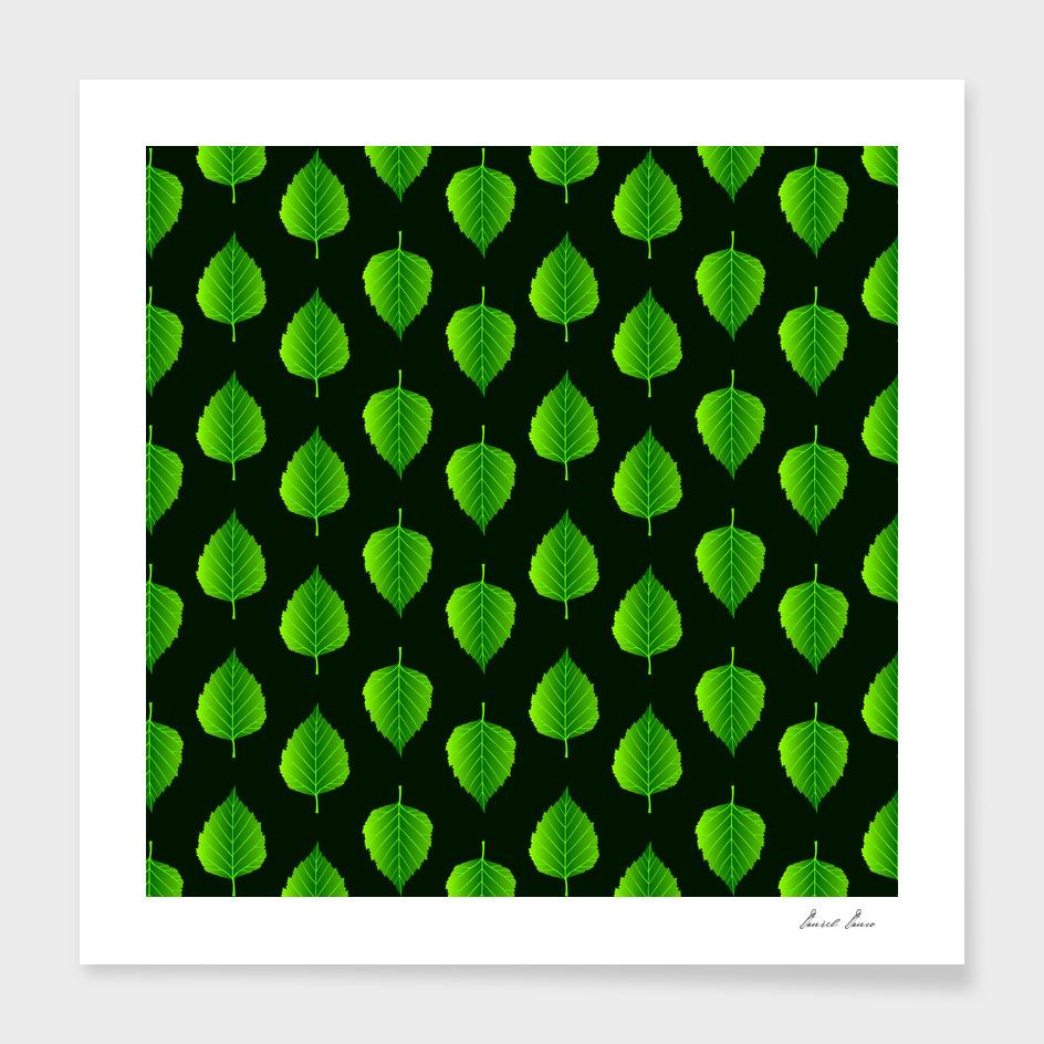 Green leaf birch