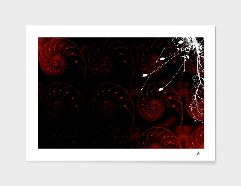 Fibonacci Swirls Red