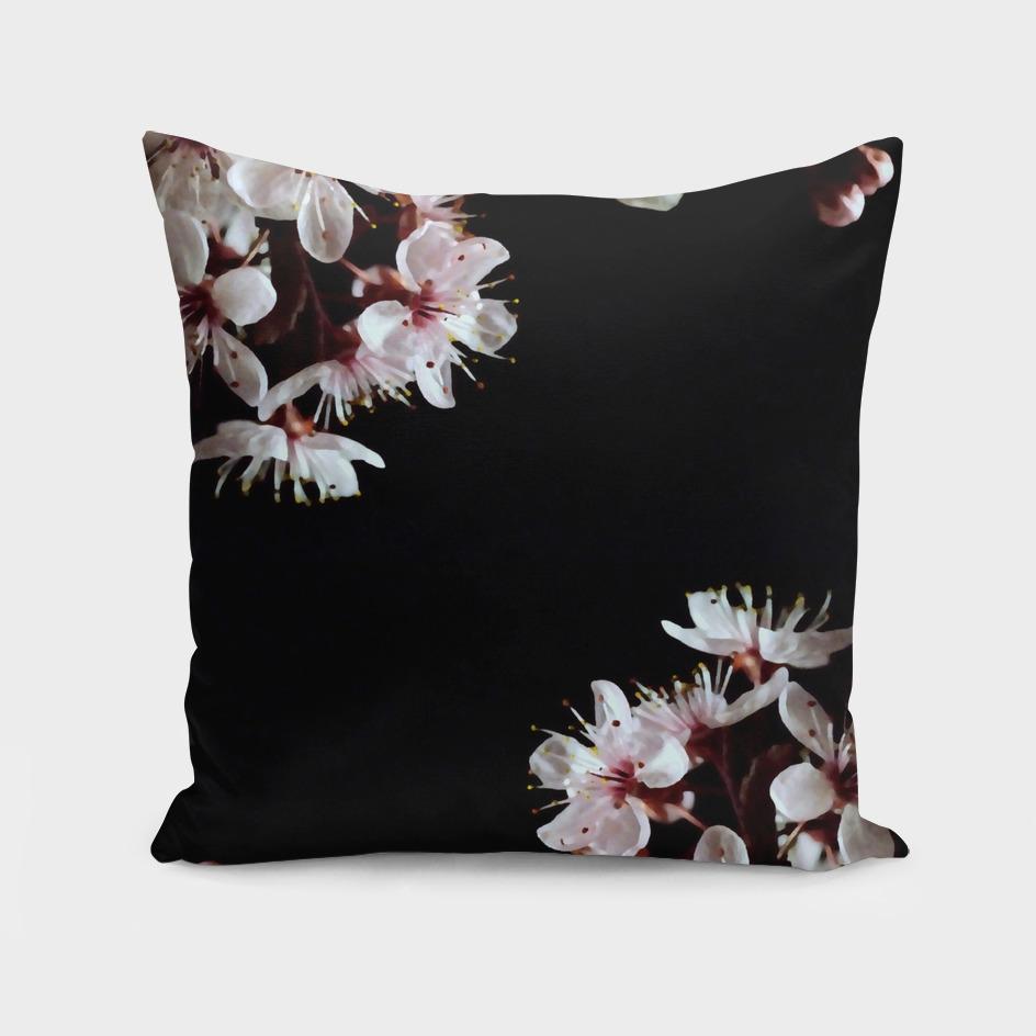 spring blossoms on black