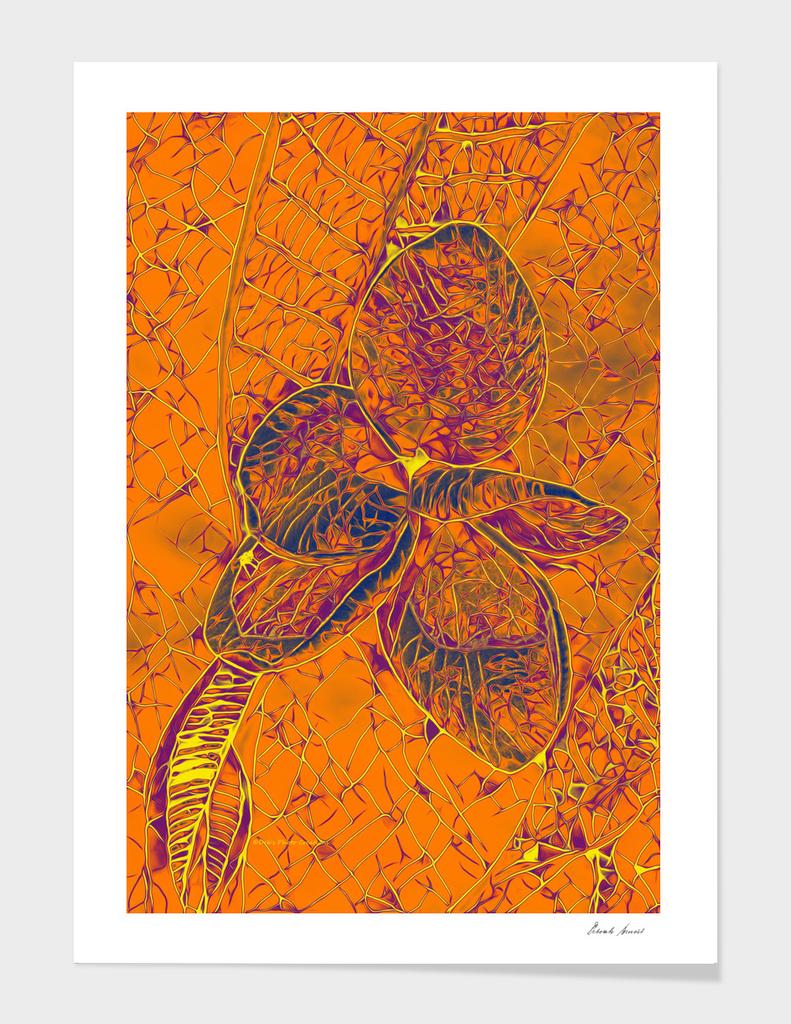 Plumeria Mosaic