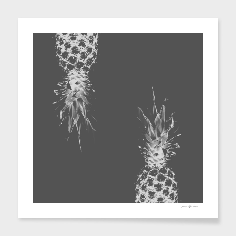 Pineapples on gray