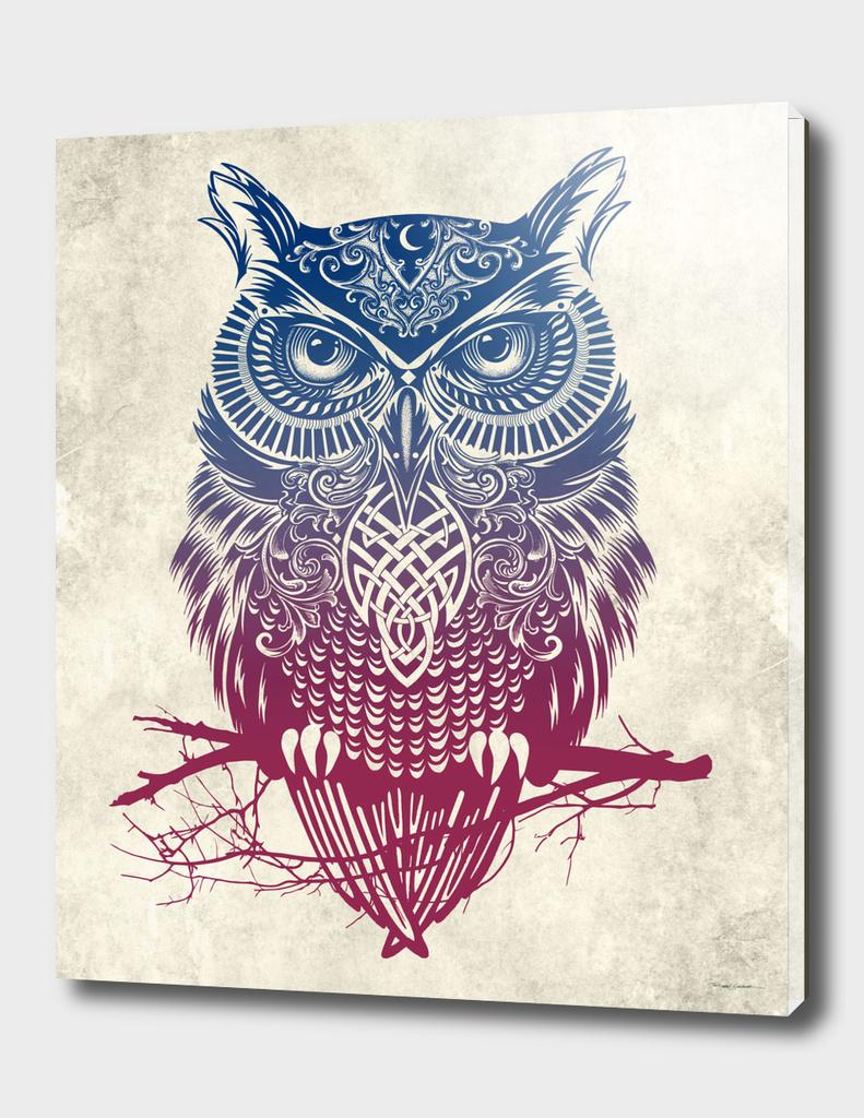 Warrior Owl