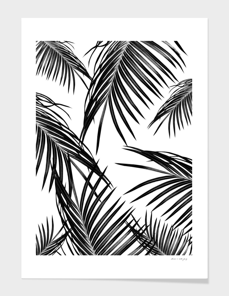 Black Palm Leaves Dream #1